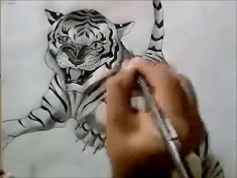 DIBUJAR TIGRE