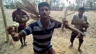 Andhra Burra Kadha fun dance