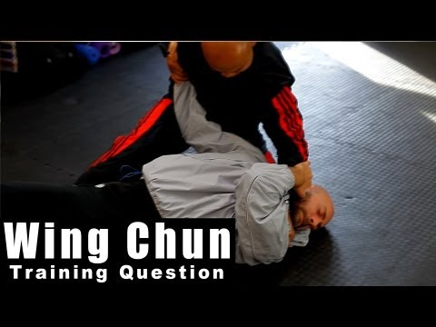 wing chun techniques - how to attack Fast Q66 Image 1