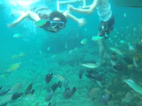 Video 02 - Boracay Trip - Snorkeling