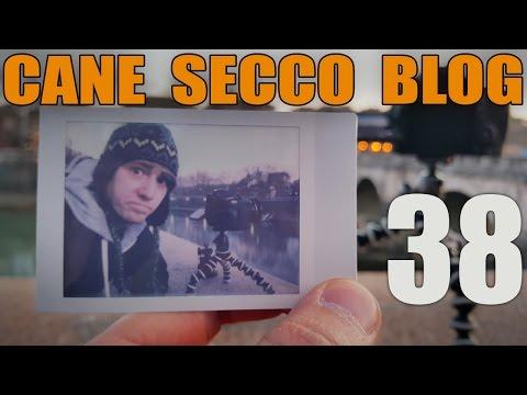 CANE SECCO BLOG - 38 - LE VOSTRE ESPERIENZE DISASTROSE
