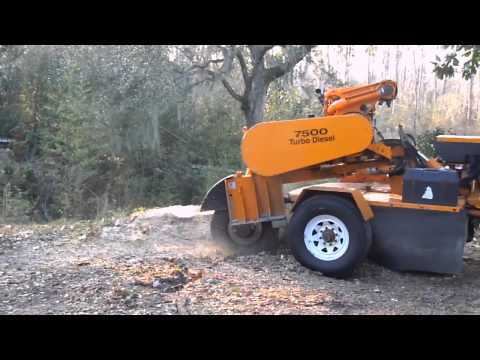 Taylor Tree Co. Grinding out Stump, Kiln MS