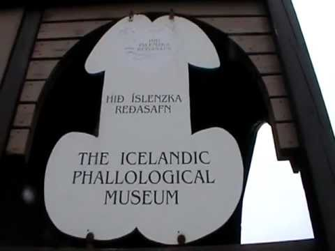 Icelandic Phallological Museum - outside 6/5/2011