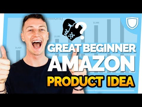 Low Competition Amazon Product Making $20,000 - Month! Great Beginner Product amazon fba