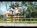 Youtube replay - BAREBACK & BRIDLELESS JUMPING 6ft +...
