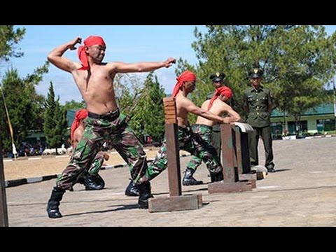 Power Indonesian Army Vs Army Foreign 2014