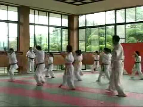 Kyokushin Karate - Hajime Kazumi Image 1