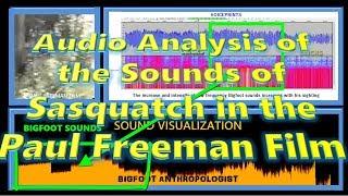 Sounds of Bigfoot AKA Sasquatch in Paul Freeman Film:   Bigfoot Anthropologist Bioacoustic Analysis