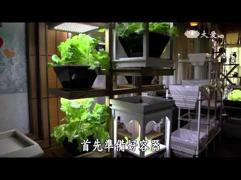 大愛-發現-20150718 科技農業 - 植物工廠