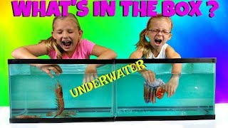 WHAT'S IN THE BOX CHALLENGE - UNDERWATER EDITION - Magic Box Toys Collector
