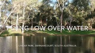 Aerial Vision - Drone Flying Very Low Over Water, River Torrens, Linear Park, South Aust (DJI Spark)