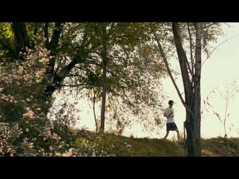 Call Me By Your Name - Monet's berm scene