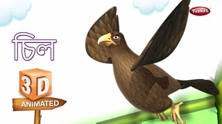 Kite Rhyme in Bengali | বাংলা গান | Bengali Rhymes For Kids | 3D Bird Songs in Bengali | Poems