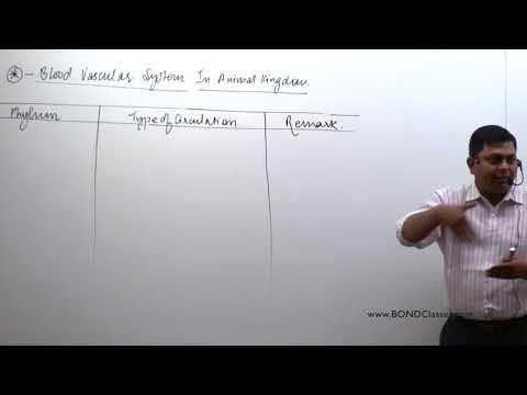 CIRCULATORY SYSTEM  PART 03