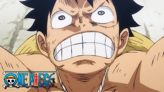 Luffy's New Muscle! | One Piece