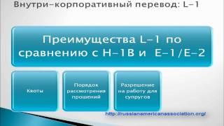 L1 Visa Бизнес-эммиграция в США (часть II)