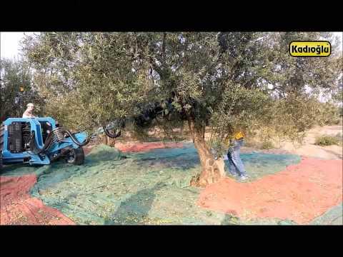Ağaç Gövdesi Sarsıcı Zeytin Toplama Makinası