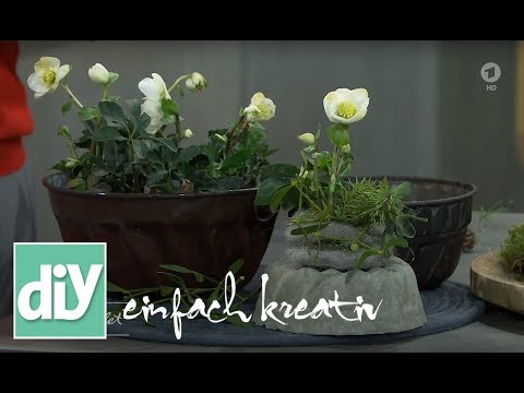 Winter-Gugelhupf mit Grün   DIY einfach kreativ
