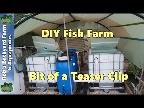 Diy Fish Farm For The Back Yard, Bit Of A Teaser Clip...