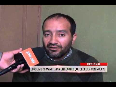 17/09/2014 - 13:05 CONSUMO DE MARIHUANA UN FLAGELO QUE DEBE SER CONTROLADO