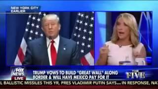 Dana Perino--We Need A Net Compilation Of Her Midol Trump-Hating Freakouts-Dumb As Amanda Carpenter