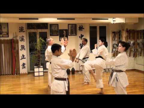 Shorin-Ryu Seibukan Karate - Germany
