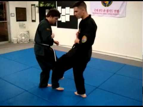 COMBAT HAPKIDO: Training Drill Compilation 2011 by Thomas Locke Image 1