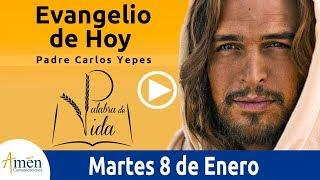 Evangelio de Hoy Martes 8 de Enero de 2019 Padre Carlos Yepes