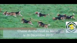 Chasse du chevreuil