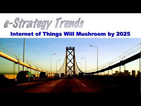 Internet of Things Will Mushroom by 2025