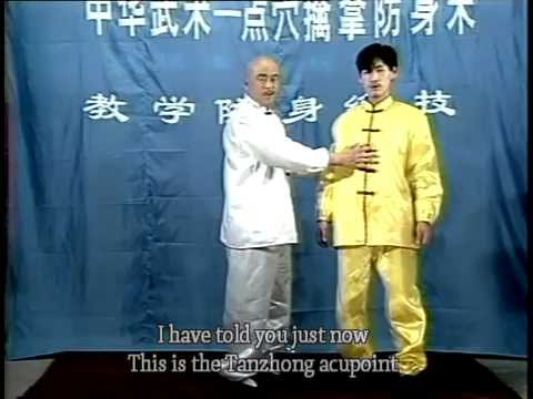 Kong fu of Pressure-Points Attack (dian xue shu qin na) 2 Image 1