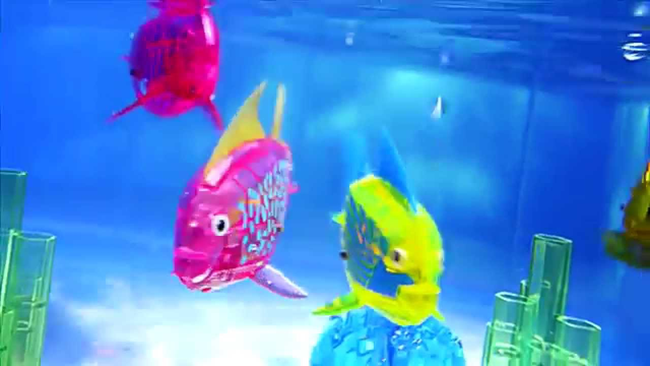 Hexbug aquabot 2 0 the harbour commercial youtube for Aquabot smart fish