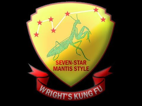 The Master, Northern Shaolin Seven Star Mantis Style Image 1