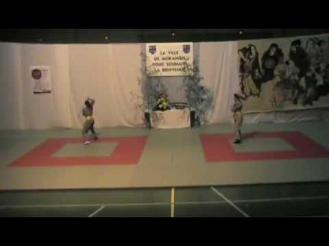 CMOM Aikido - 07.02.2009 - Gala des Arts Martiaux (Vo Khi Tuat) 6/11