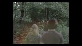 Lissie Wild West Twin Peaks Version