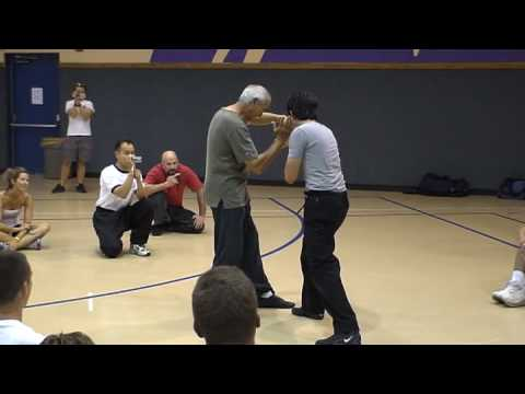 Willem de Thouars - Kuntao Silat de Thouars