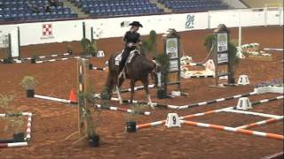 Trail and Western Riding. Pines Royalty. APHA World Show 2011