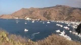 Cherry Cove at Catalina Island
