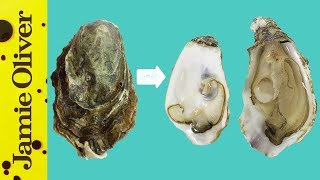 How To Open Oysters | 1 Minute Tips | Bart's Fish Tales