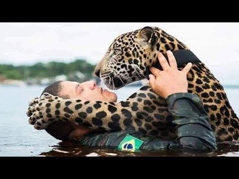 14 Unglaubliche Helden Die Tieren Das Leben Gerettet Haben