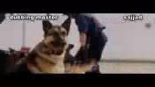 Manhooos dog