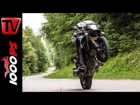 Suzuki V-Strom 1000 - Test | 5 Meinungen - 1 Bike | Stunts, Action, Sound