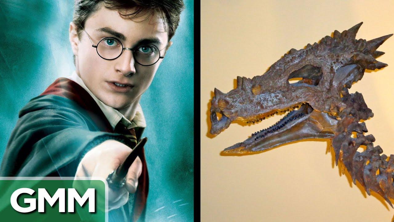 Famous Youtubers Names 5 Dinosaurs Named After Famous