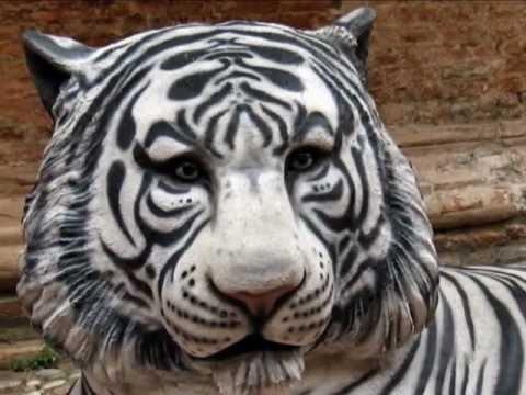 Ferrara – THE FAUNAL COUNTDOWN – mostra invadente di animali nella città