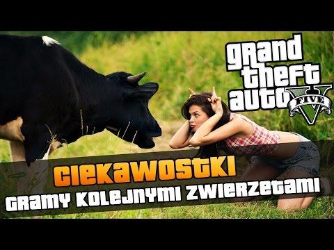 GTA V Gramy kotem psem krową jelonkiem i kojotem Ciekawostki z GTA V #101