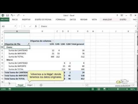 Curso de Excel 2013  17  Tablas y grficos dinmicos