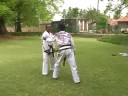 shorinjikempo pinning down and throws Image 1