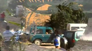 Encierro en Chiloeches por el campo dia 15 sept