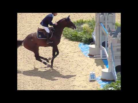 London 2012 Jumping Horses