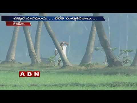 ABN Special Story | Beauty of Konaseema | ABN Telugu